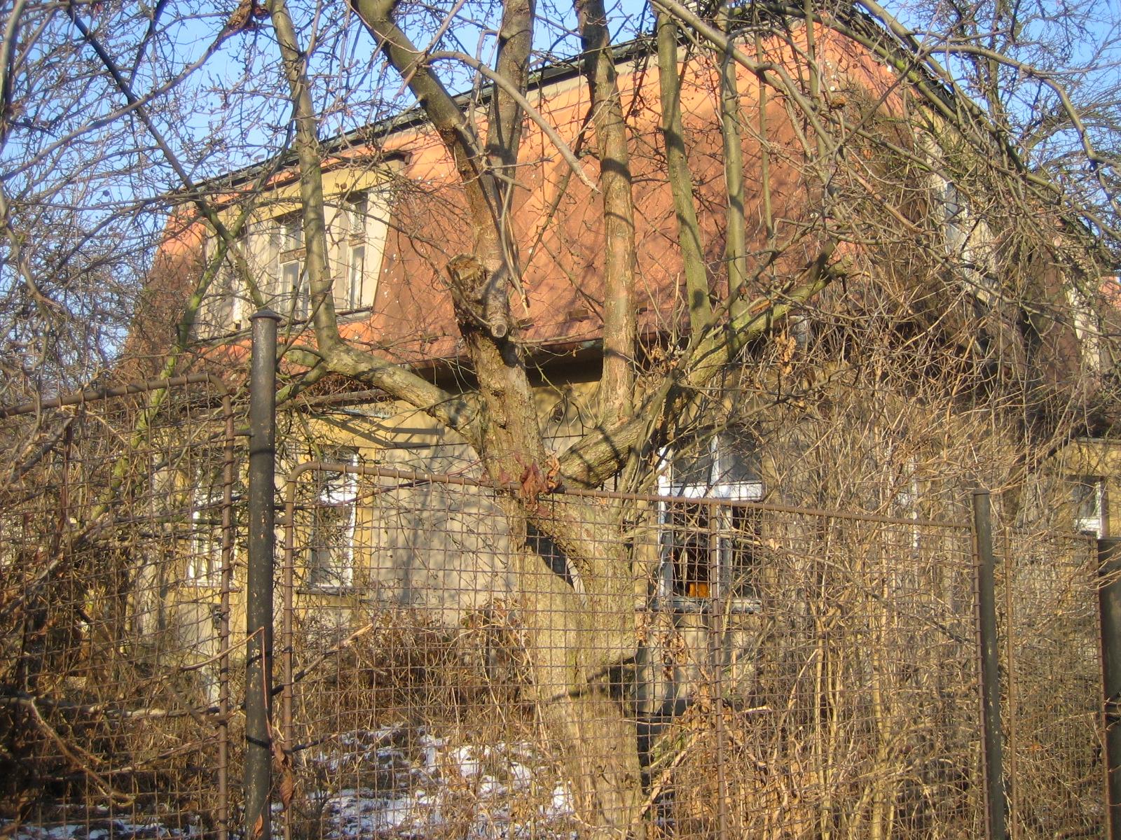 vila pred rekonstrukci